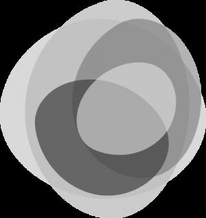 logo_gray_znak
